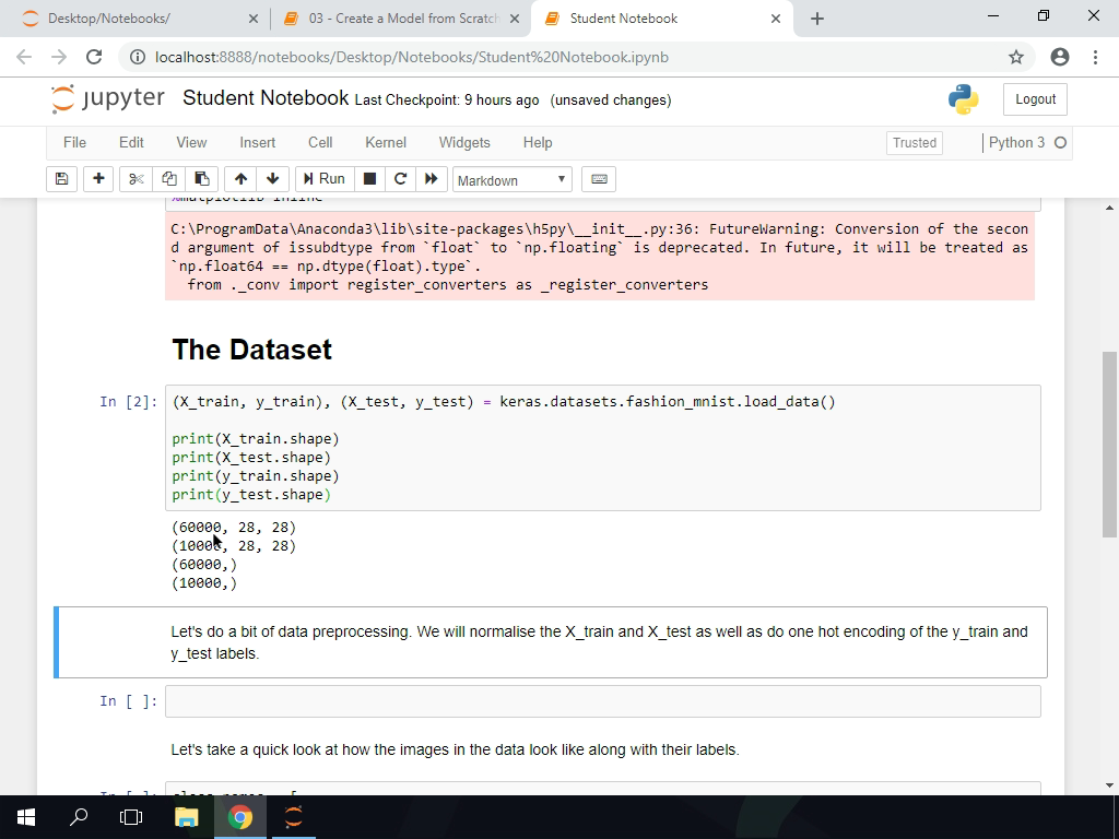The Dataset