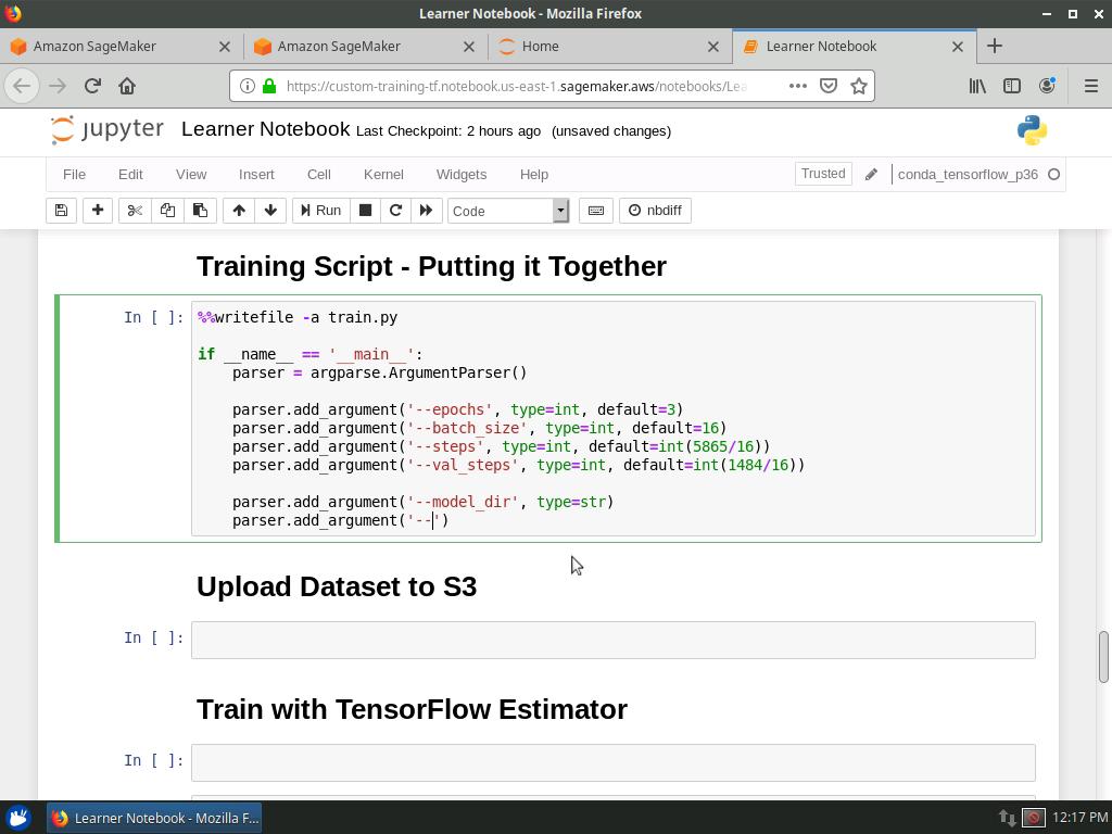 Training Script - Arguments