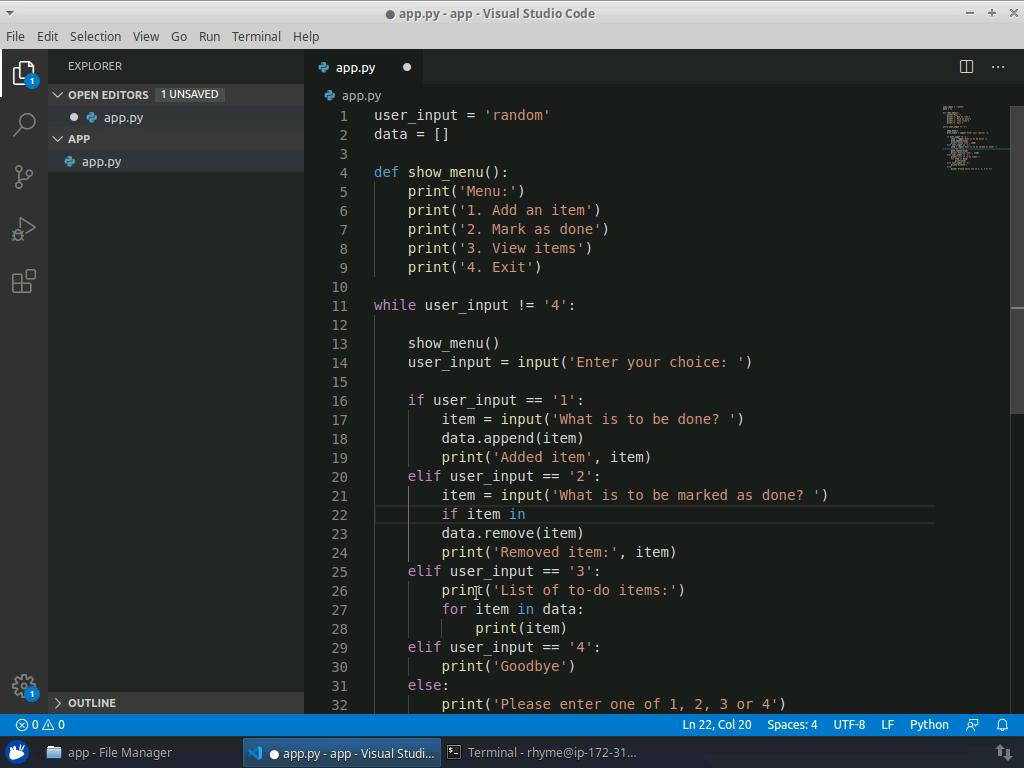 Your First Python Program
