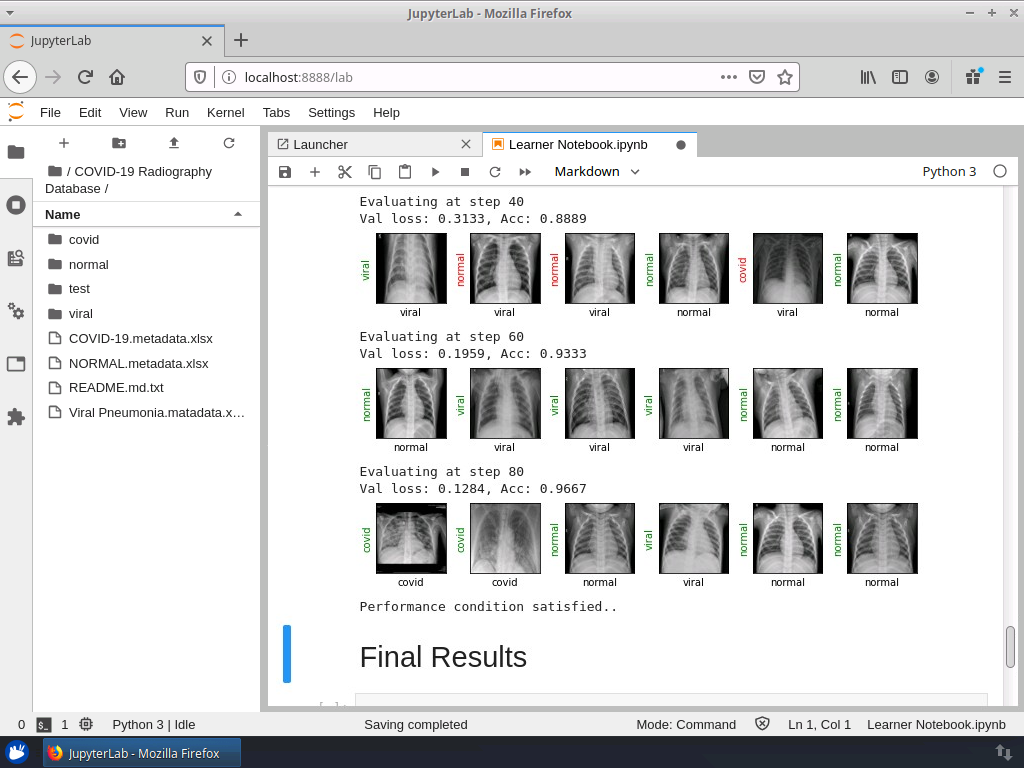 Detecting COVID-19 with Chest X Ray using PyTorch