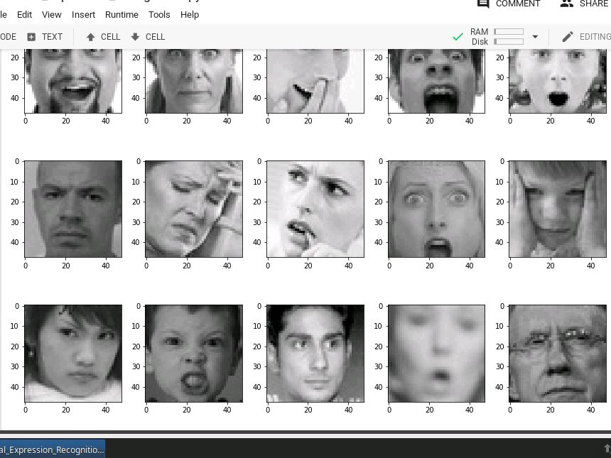 Project: Facial Expression Recognition in Keras