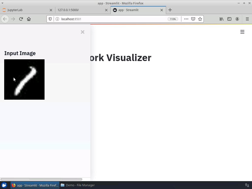 Streamlit Web Application